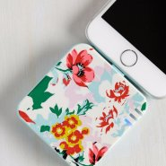 iphone-portable-chargers-png