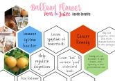 Balloon Flower Pear Juice Health Benefits