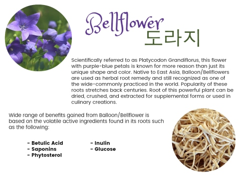 Bellflower Intro Info
