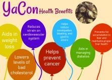 YaCon Health Benefits